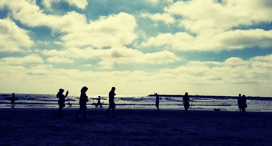 #748: Surf The Original Dog Beach.